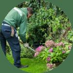 Fantastic gardener fixing garden